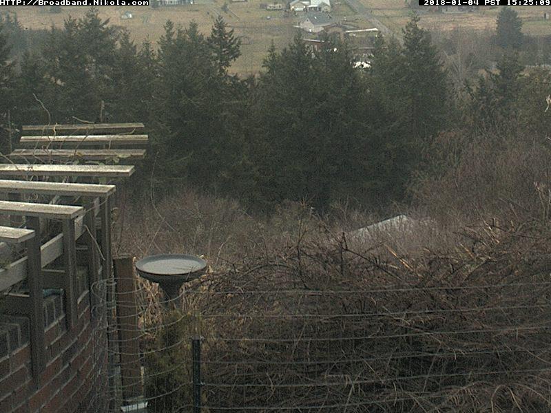 Bird Feeder Webcam